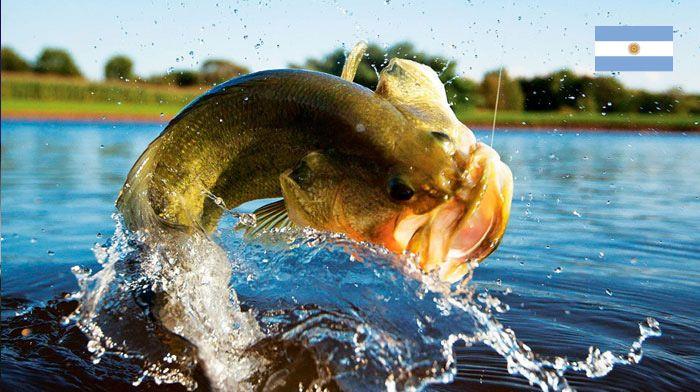 Pescaria Passo de la Patria Argentina